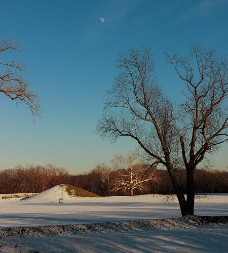 Earthen mounds covered in a light blanket of snow with a large tree in the foreground and the moon visible in the blue sky