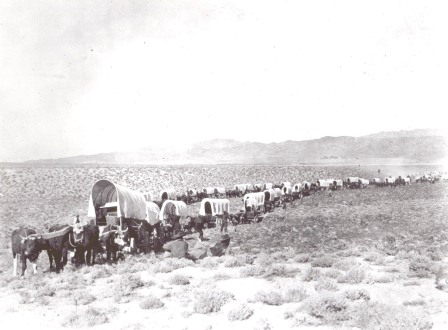 Wagons on trail