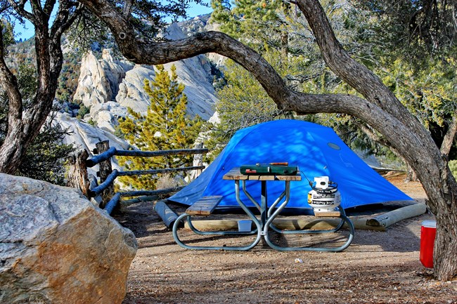 Campsite 37 with blue tent in shade of Mountain Mahogany