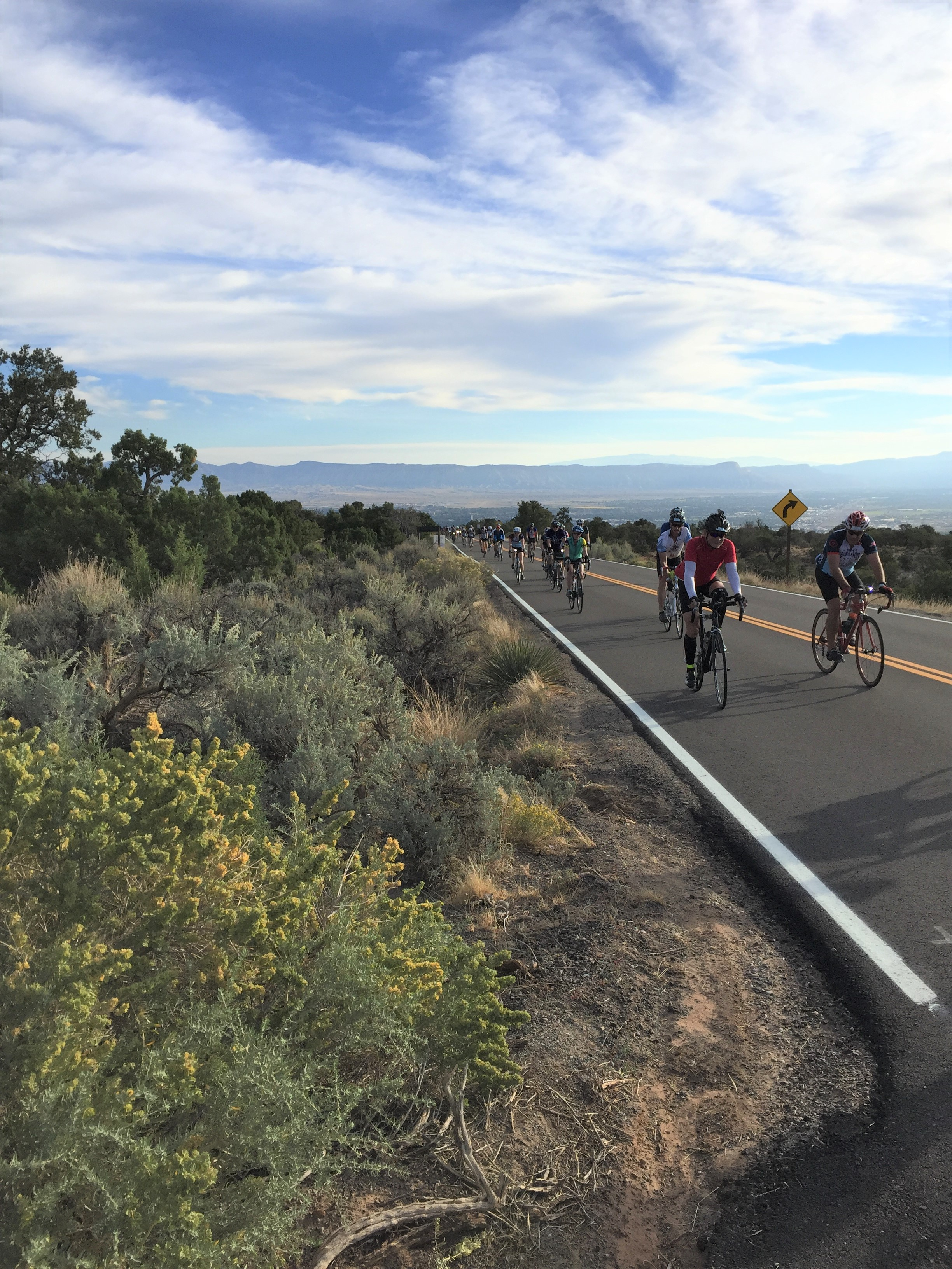 15-20 bicyclists riding on an asphalt road with sagebrush on the near side of the road.