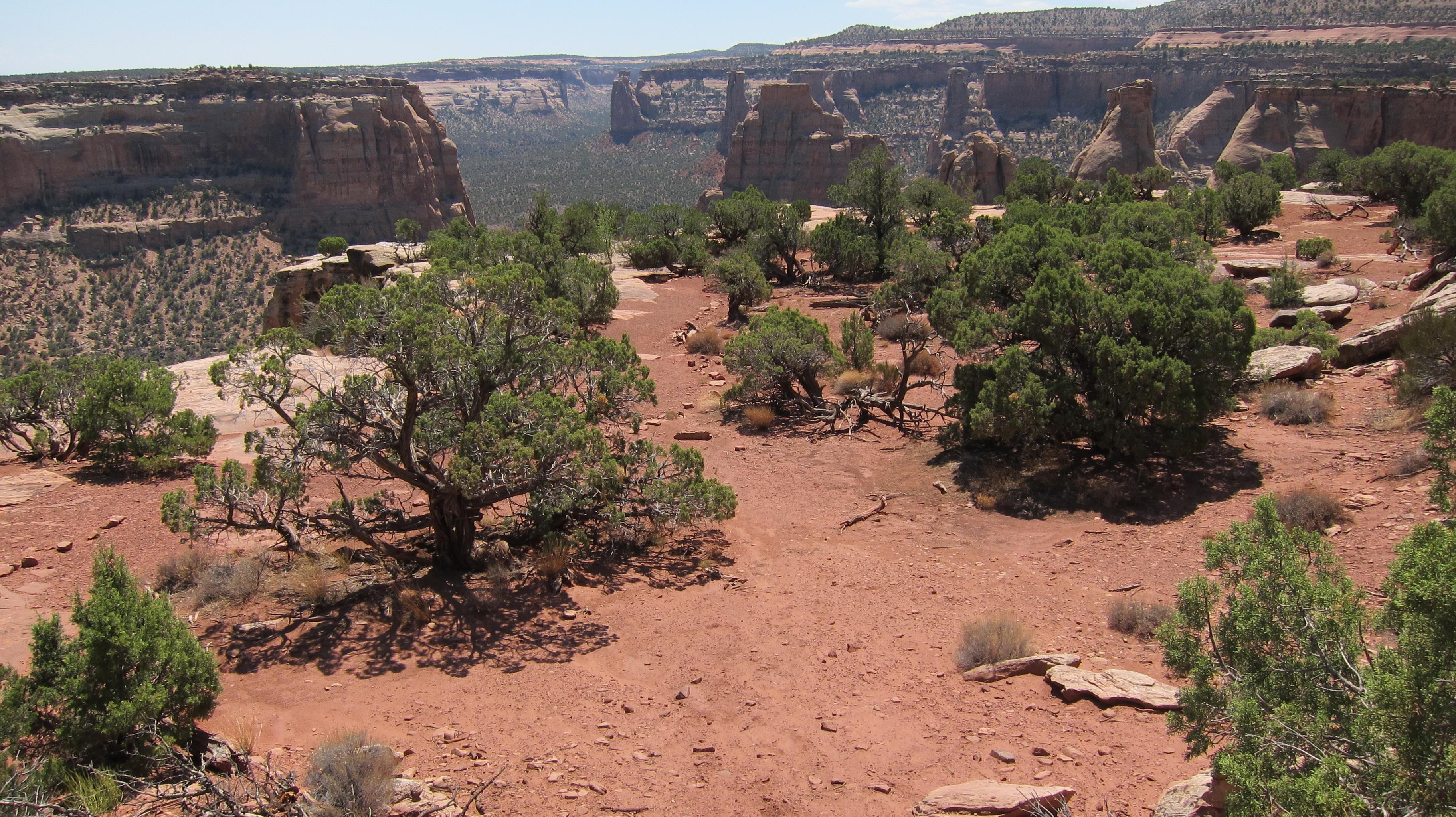 Book Cliffs Geology Book Cliffs View 1