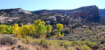 No Thoroughfare Canyon in the Fall