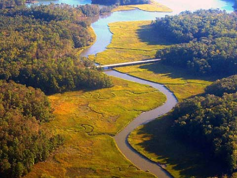 aerial view of wetlands along the Colonial Parkway