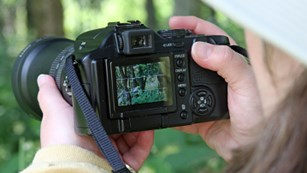 Close-up of woman looking through a camera viewfinder at woods