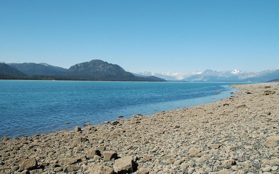 Muir Inlet shoreline today