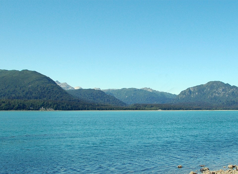 Muir Inlet Today