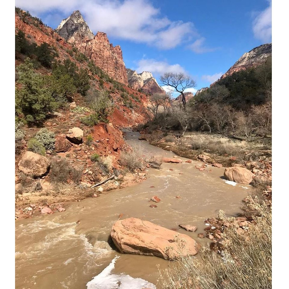 The Virgin River flowing through Zion Canyon