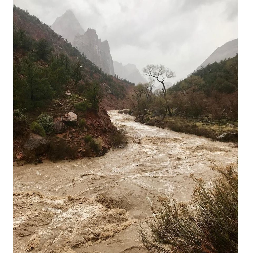 The Virgin River floods through Zion Canyon