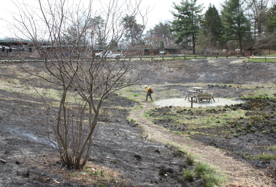 A firefighter inspects burned ground