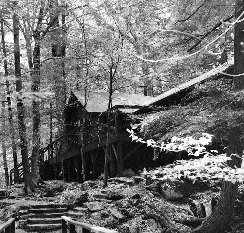 A black and white photograph of a cabin in the woods.