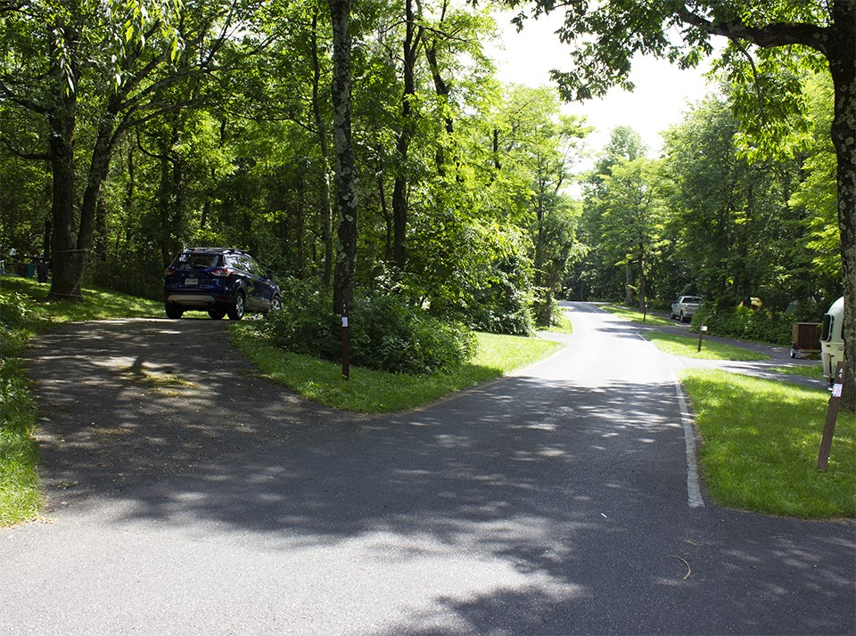 A color photograph of a road through a campground.