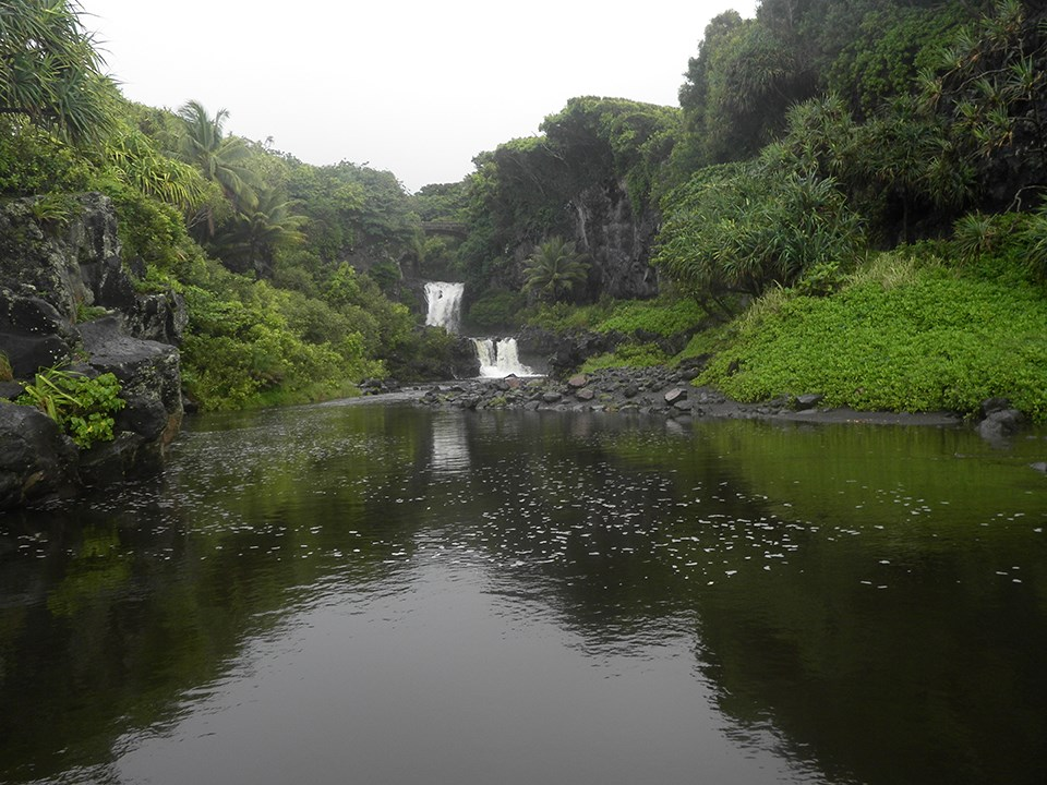 """Normal"" flow conditions near the mouth of a stream at Haleakalā National Park."
