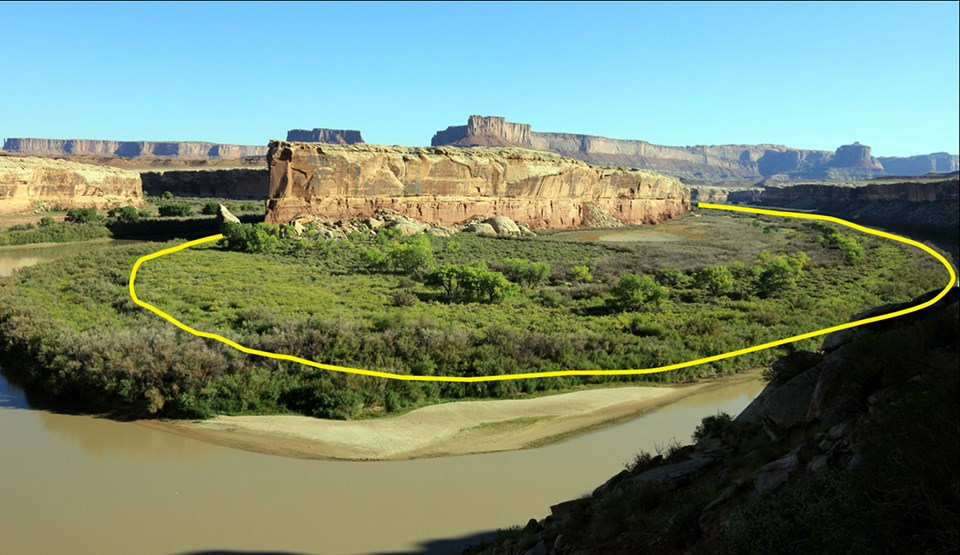 River island with yellow line showing previous edge of riparian area, now eclipsed by additional vegetation