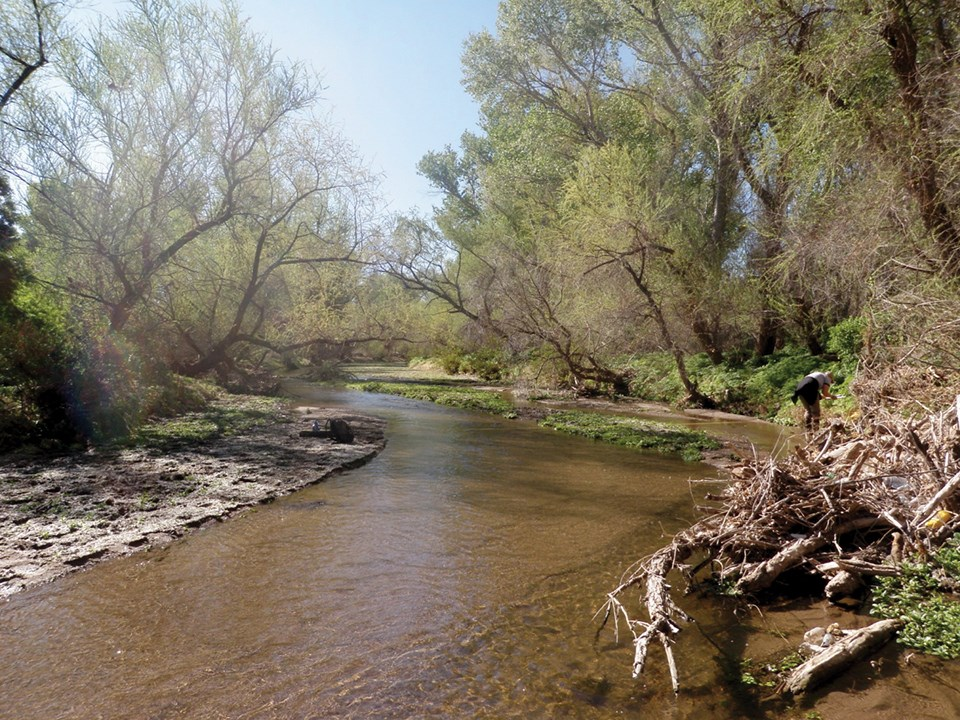 Santa Cruz River flowing