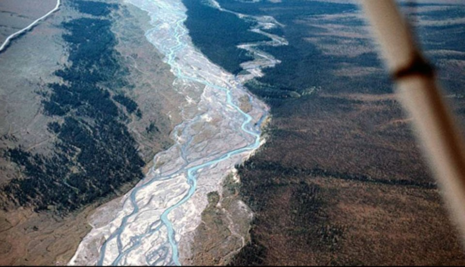 aerial view of a river with sparse forests on either side