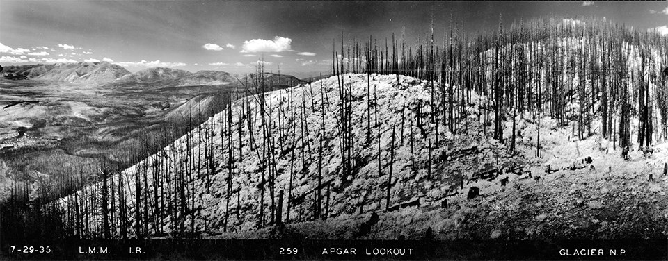Apgar Lookout, Glacier National Park 1937
