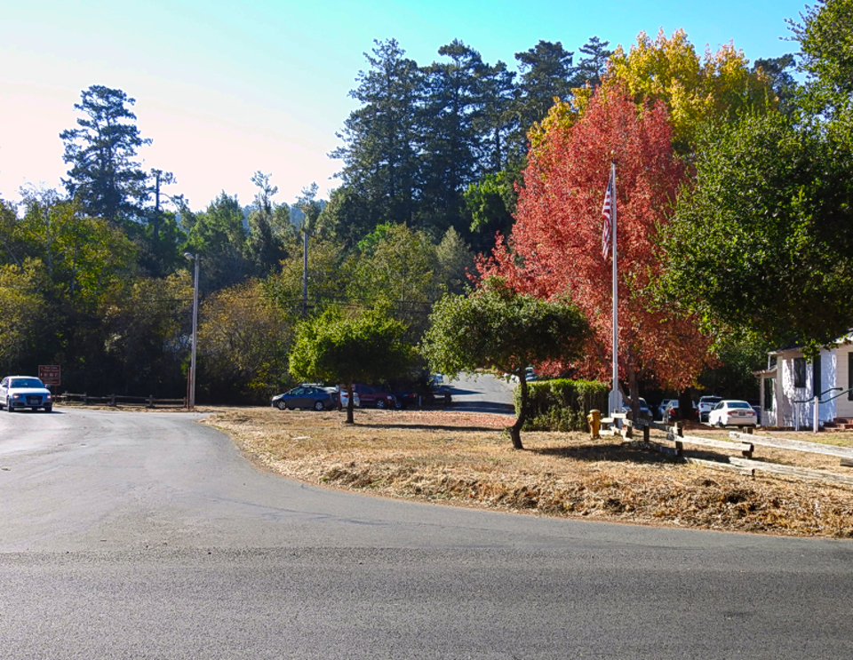 A color photo of a paved road on the left, a white building on the right, numerous green-leafed trees in the background, with a red-leafed tree and a yellow-leafed tree in the right half of the photo. Numerous modern vehicles are visible in a parking lot.