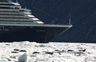 A large cruise ship nears harbor seals hauled out on the ice near Glacier Bay National Park