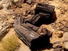 2 large dark wood logs laying in a rocky landscape