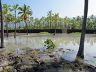 tsunami innundation of historic fish ponds