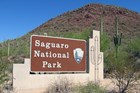Saguaro NP entrance sign and saguaro cacti