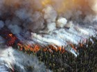Aerial view of a forest fire with red flames and white and gray smoke