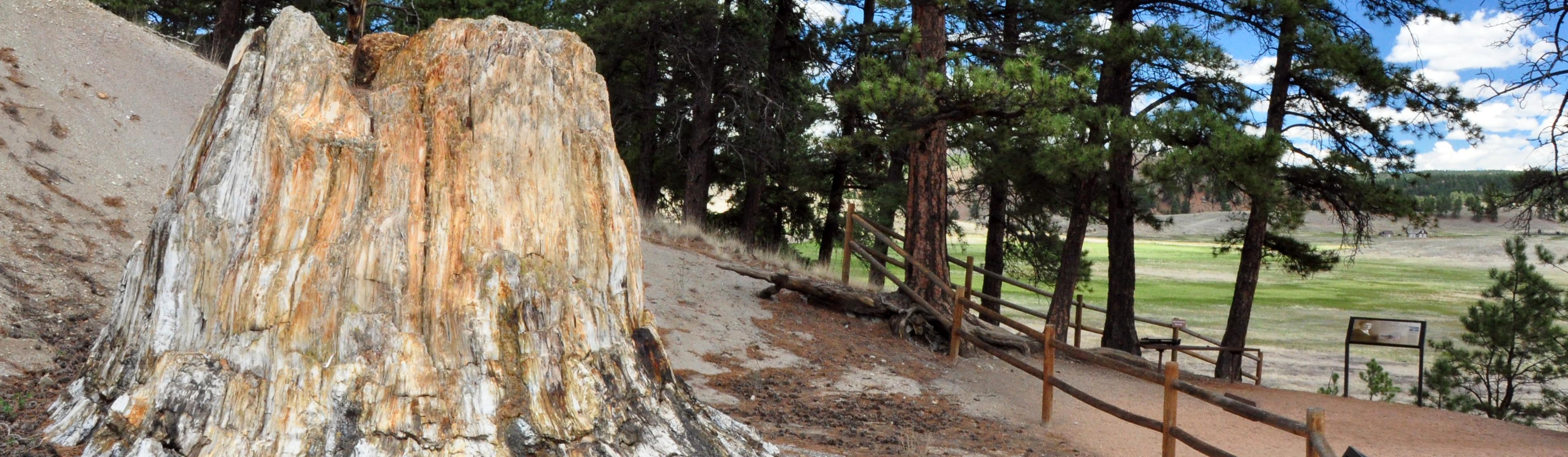 213b01a2f6fd Florissant Fossil Beds National Monument (U.S. National Park Service)