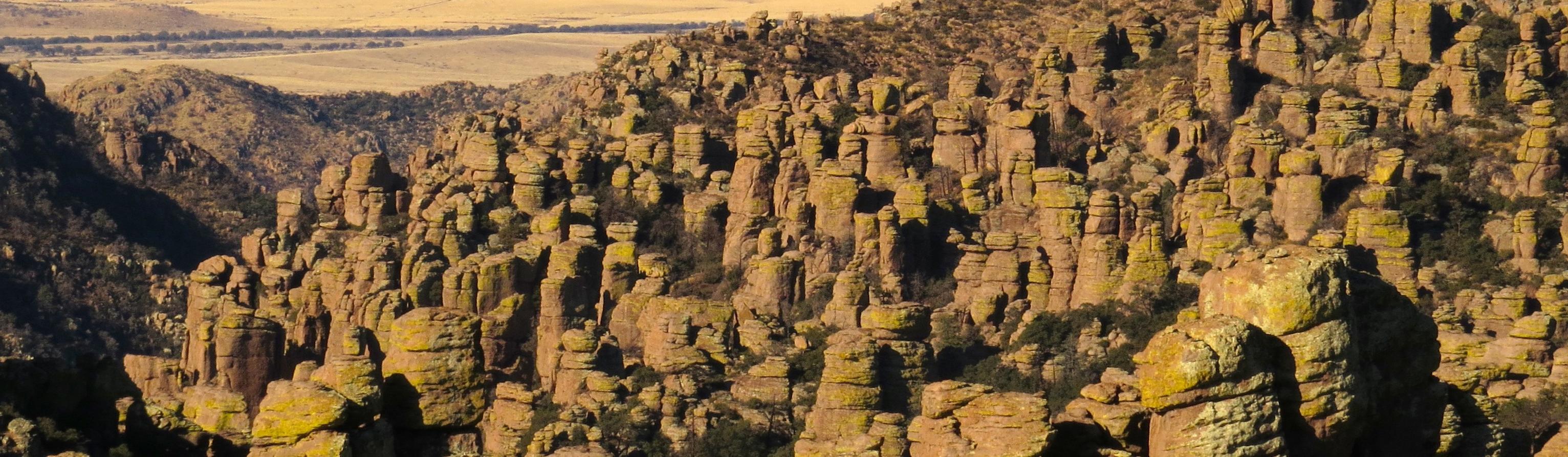 Chiricahua National Monument (U.S. National Park Service)