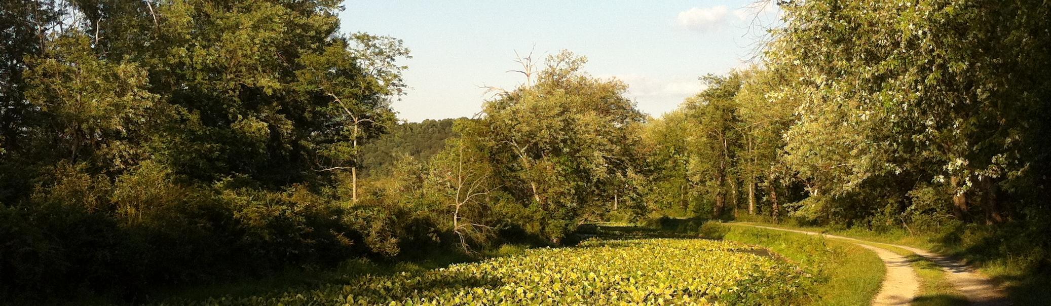 Chesapeake & Ohio Canal National Historical Park (U.S. National Park Service)