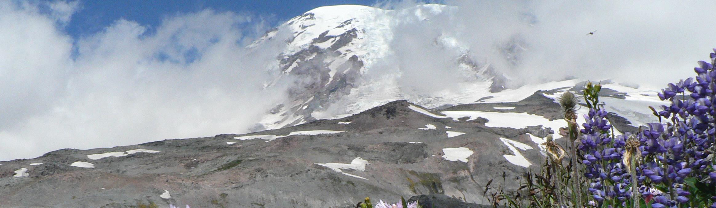 Mount Rainier National Park (U S  National Park Service)
