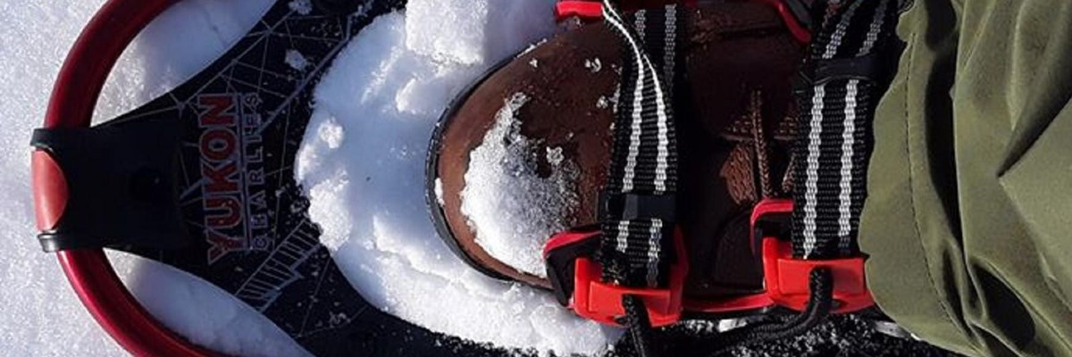 A snowshoe in the snow