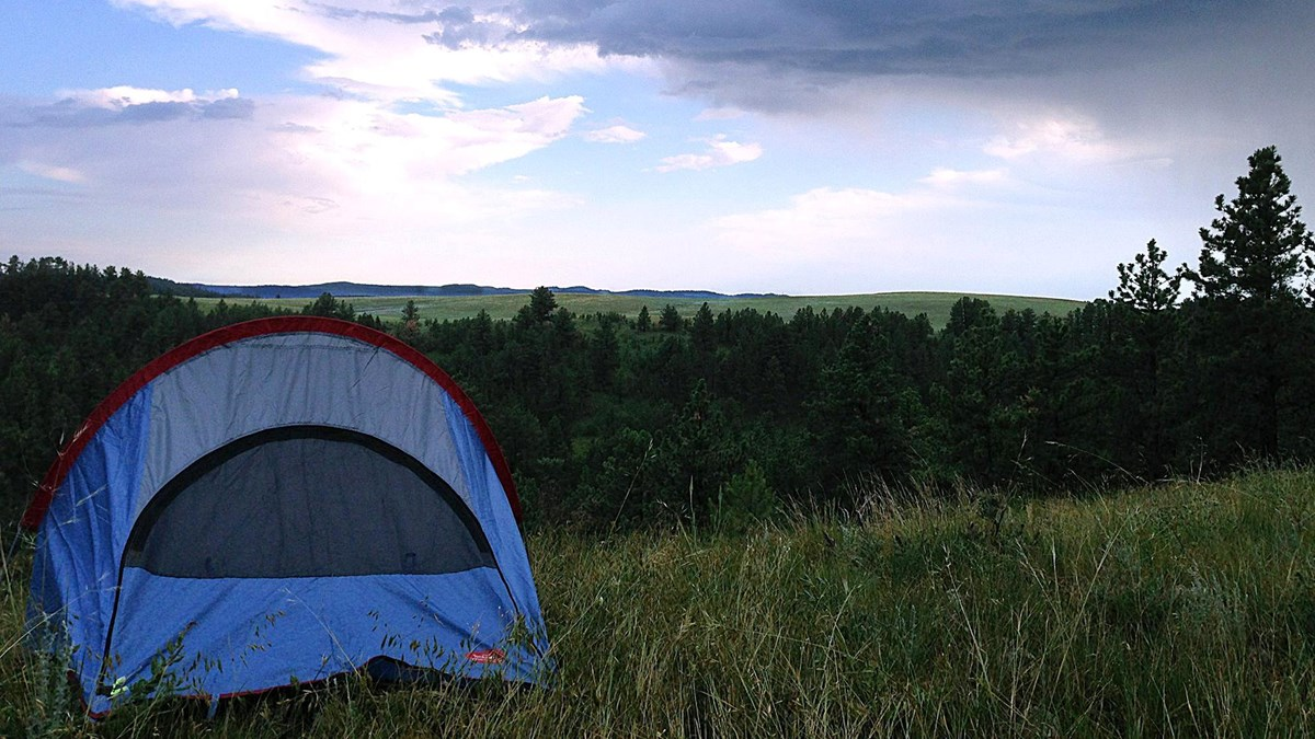 a tent in a prairie overlooking the forest