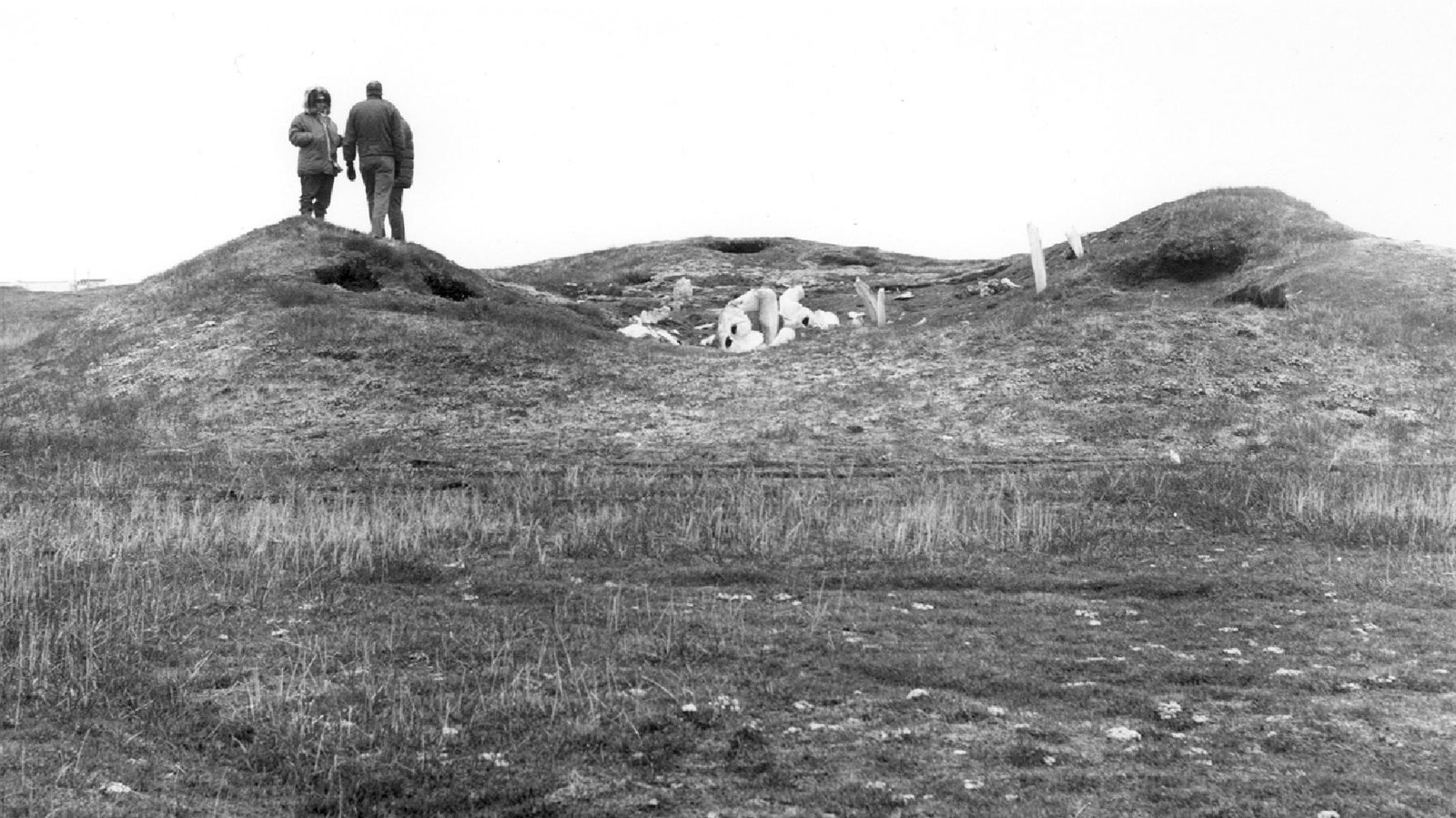 A mound site whale bones at its peak and three people standing next to them