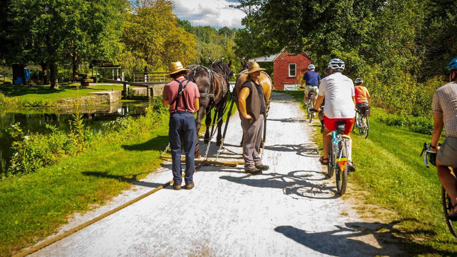 Bikers and cattleman enjoy a trail