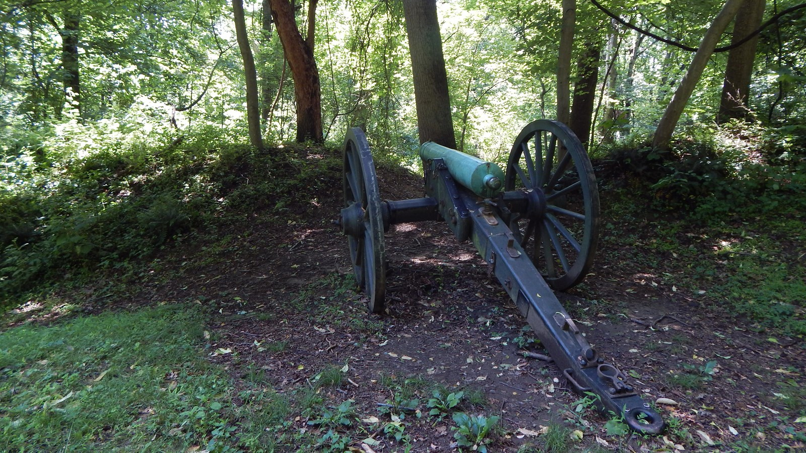 Cannon at Fort Marcy Park. Trees and bushes in the background.