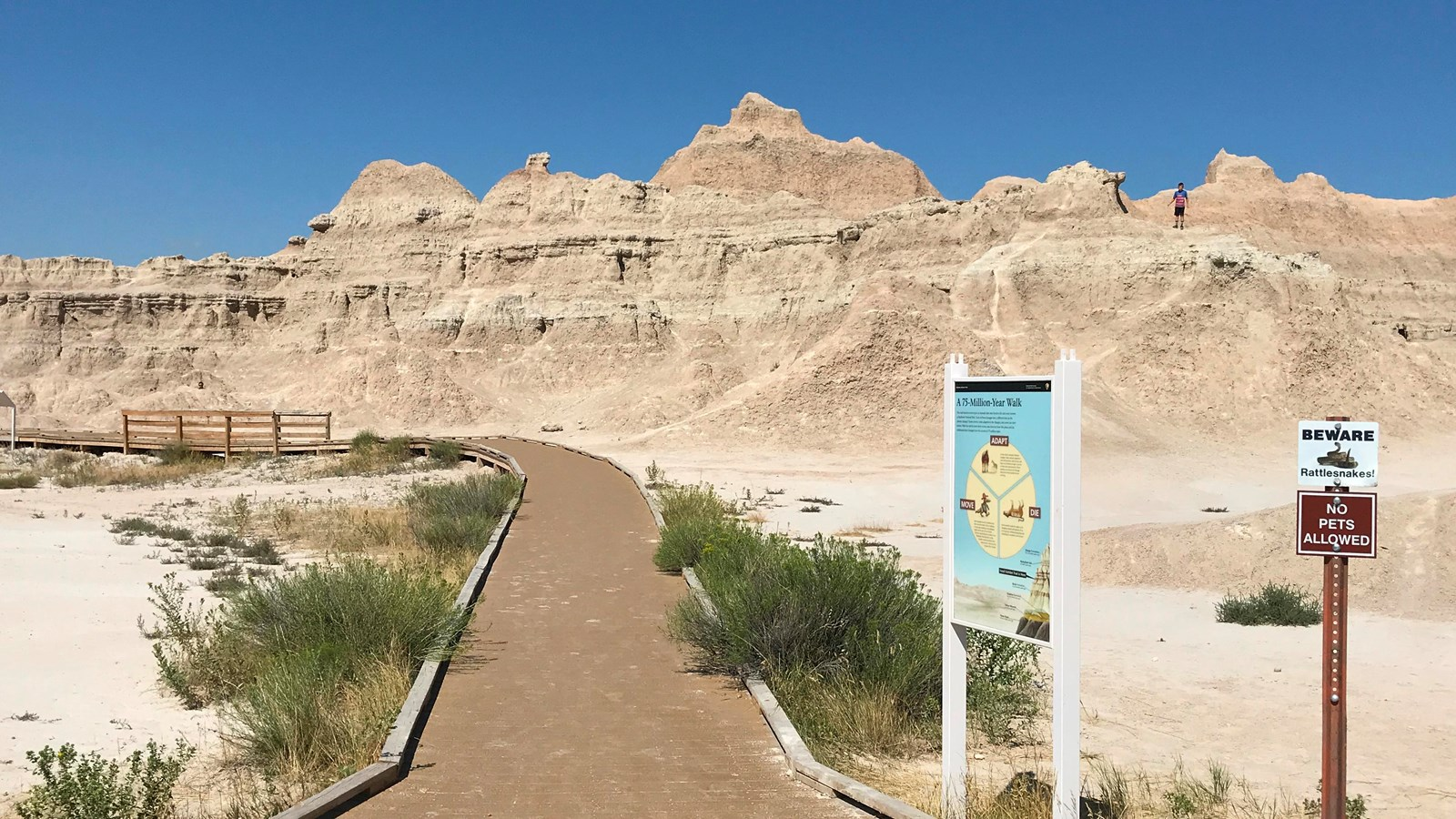 A boardwalk extends towards badlands formations under blue sky amid exhibit and rattlesnake sign.