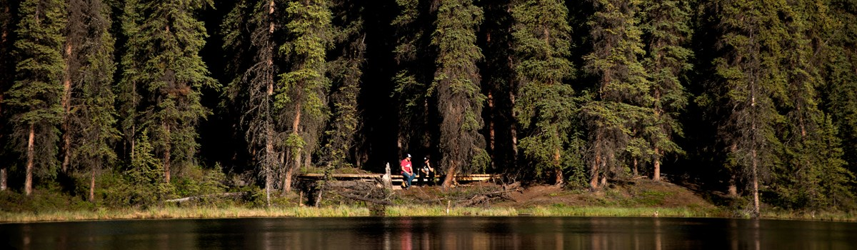 people sitting on a forested lakeshore
