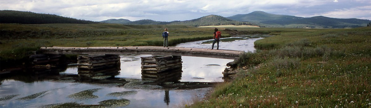 Hikers crossing a wooden bridge in the wide-open Pelican Valley.