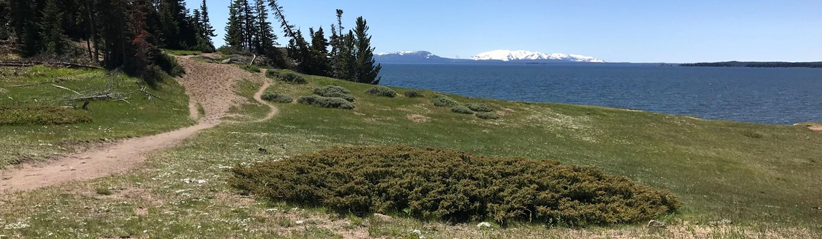 Trail leading across a meadow to the rocky Storm Point on the shore of Yellowstone Lake
