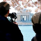 Visitors take photos of the Thomas Jefferson Memorial during the Cherry Blossom Festival.