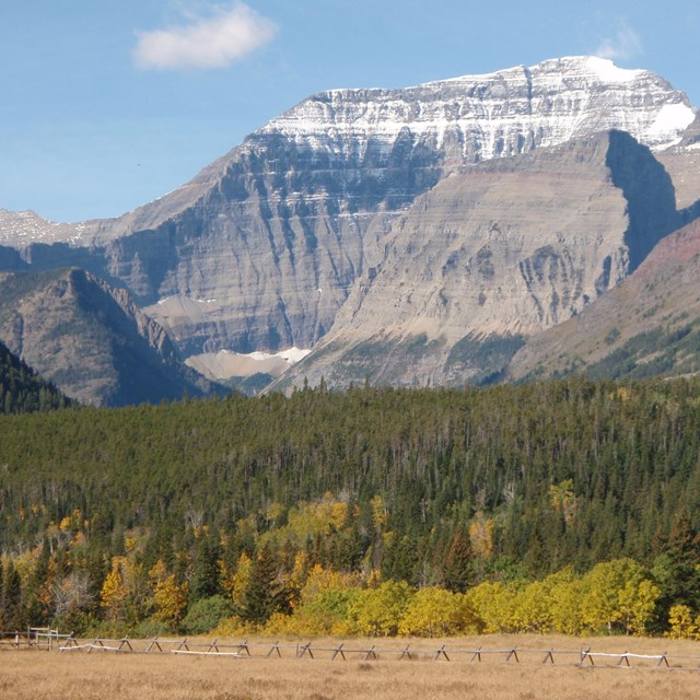 Mt. Cleveland rises above the Belly River valley in Glacier NP.