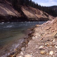The Yellowstone River rushes through a yellow rock canyon.
