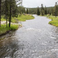 Firehole River with forest standing on both banks and steam rising up from a distant geyser basin.