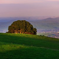 Green hill with a landscape view