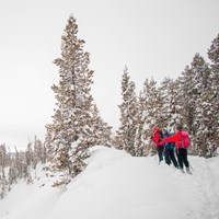 Skiers stop to admire the views of the Grand Canyon of the Yellowstone from the North Rim Trail.
