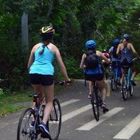 Bicyclists with helmets ride along a paved wooded trail lined with trees.