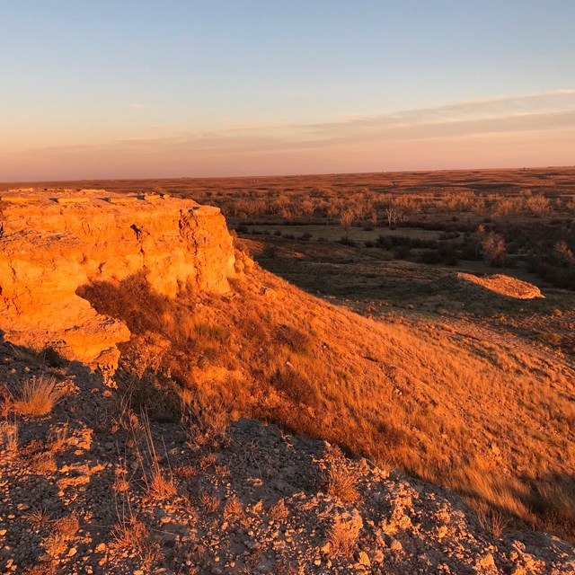 A rocky outcropping looks out over a vast grassland, under a warm setting sun.