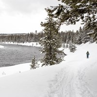 A lone skier makes her way along the Madison River on the Riverside Ski Trail.