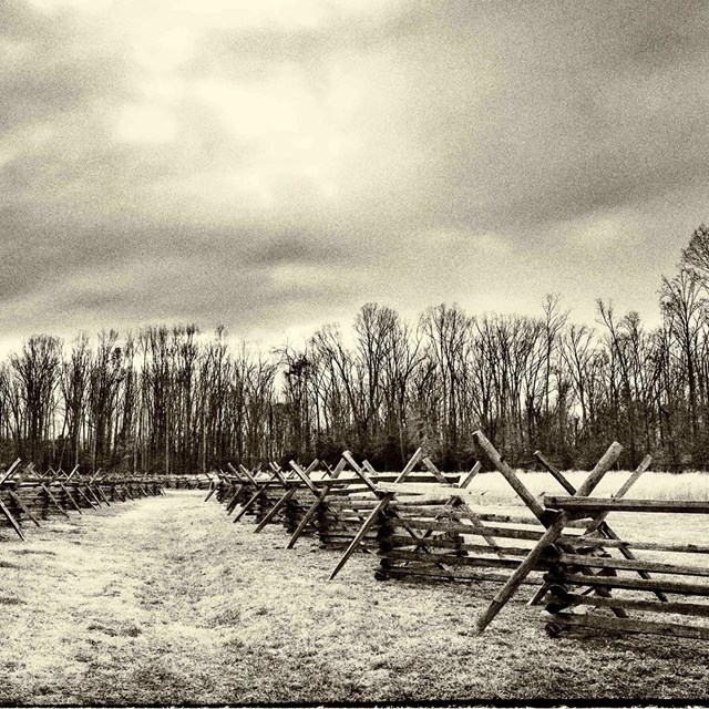 Black and white image of wooden fence lining Civil War battlefield