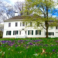 The white Ford Mansion sits among green grass and purple flowers.